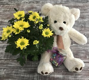 Teddy with flowers and candies